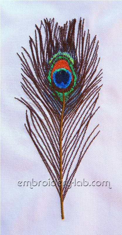 Feather peacock large