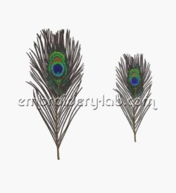 Feather peacock 0001+0002 SET