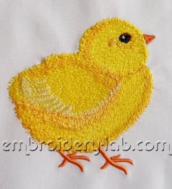 chick 0002_2