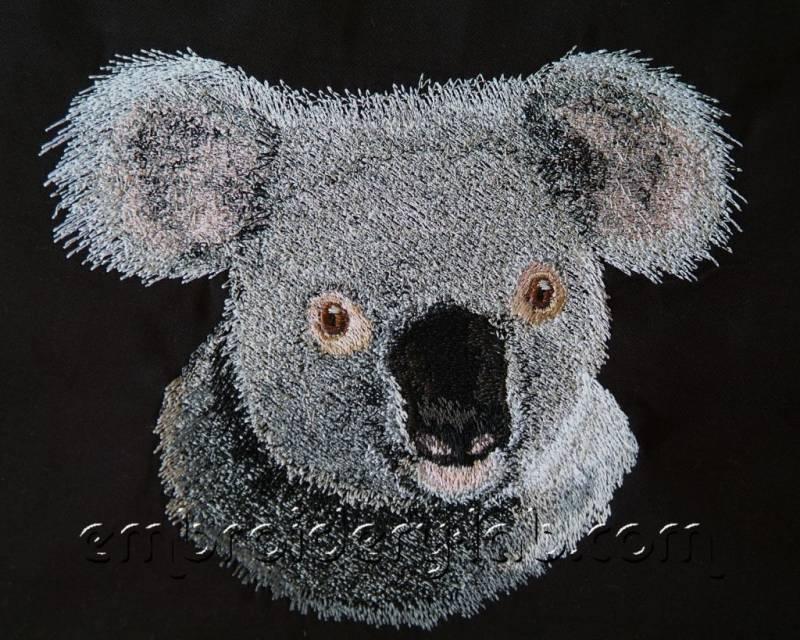 Koala 0001