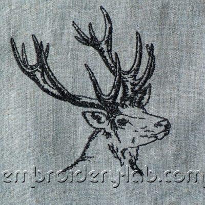 Deer 0002