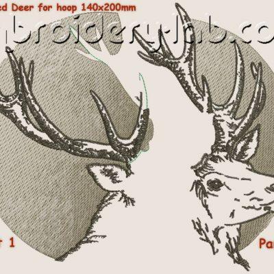 Deer 0001
