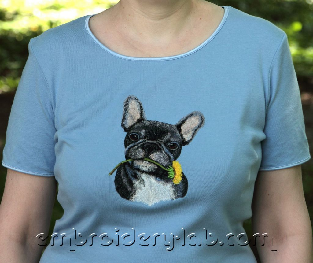 French Bulldog 0001