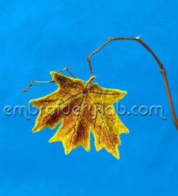 Maple leaf 0003 Brooch