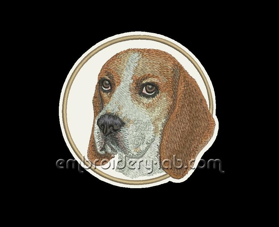 Beagle 0001