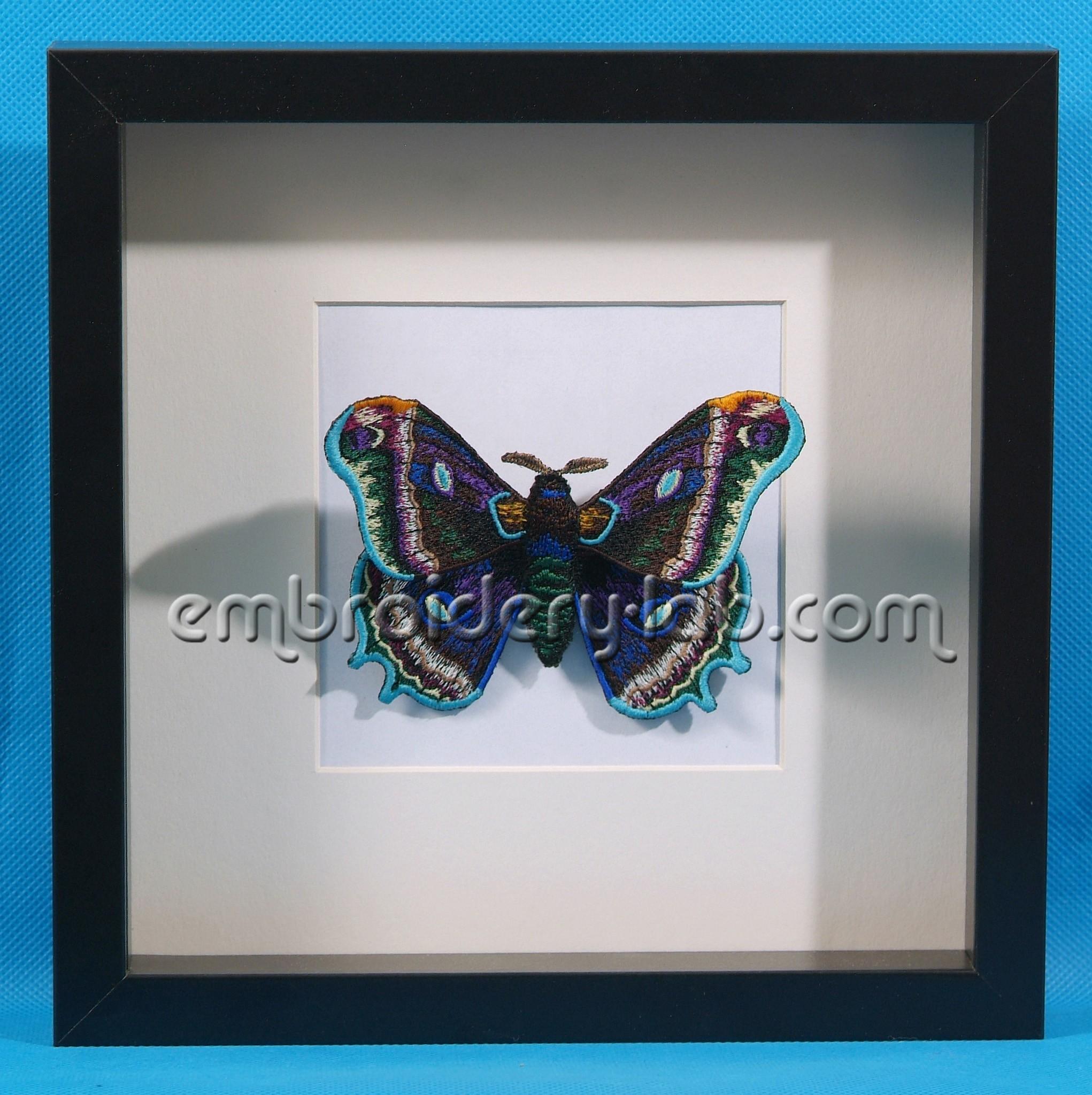 Butterfly 0006 3D