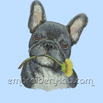 French Bulldog 0001S