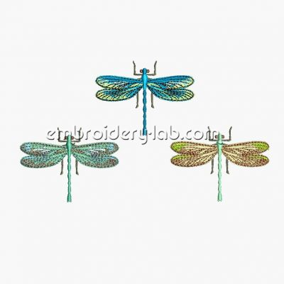 Dragonfly 0003