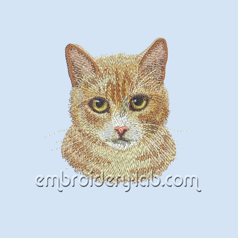 Red Cat 0001