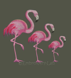 Flamingo embroidery design